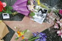 Elizabeth Taylor: A Life in Film