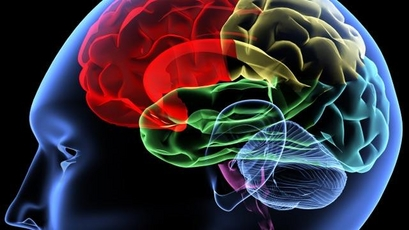 Brain Damage Breakthrough?