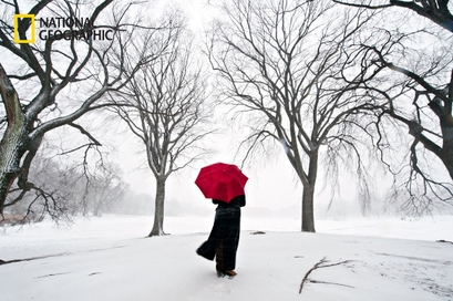 A woman watches as the blizzard blankets Prospect ...