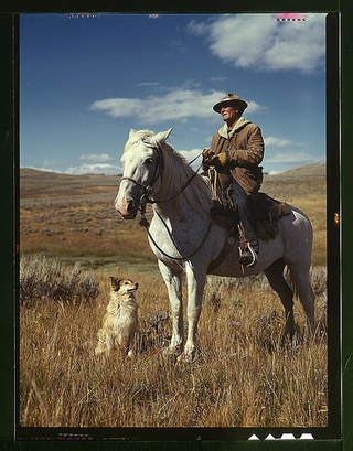 1942: Shepherd with his horse and dog on Gravelly ...