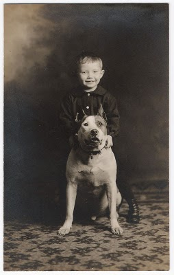 A boy stands with his best friend: the American ...