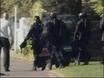 NZ town under siege