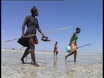 Overfishing in Madagascar