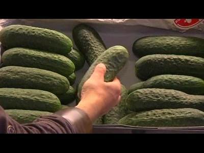 Spain angry over German cucumber slur