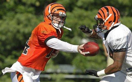Cincinnati Bengals Quarterback Andy Dalton (14) Hands