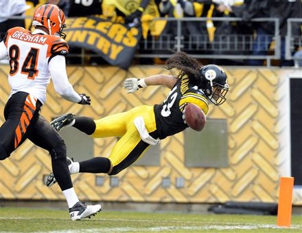 troy polamalu touchdown