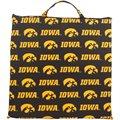 Iowa Hawkeyes Game Day Cushion