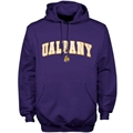 Albany Great Danes Purple Player Pro Arch Hoody Sweatshirt