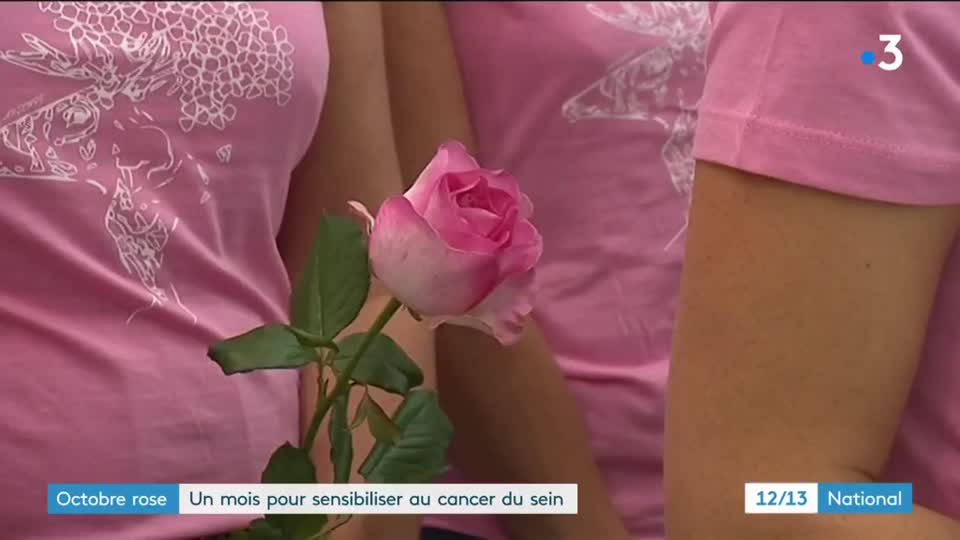 Octobre Rose Une Exposition Photo Pour Sensibiliser Au Cancer Du Sein