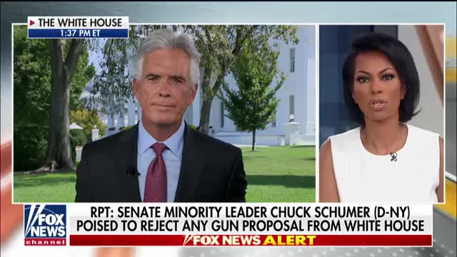 Sen. Marsha Blackburn blasts unconstructive Democratic opposition to GOP gun control proposals