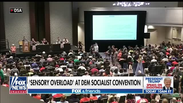 Delegates erupt over sensory overload and gendered pronouns at Democratic Socialists of America convention