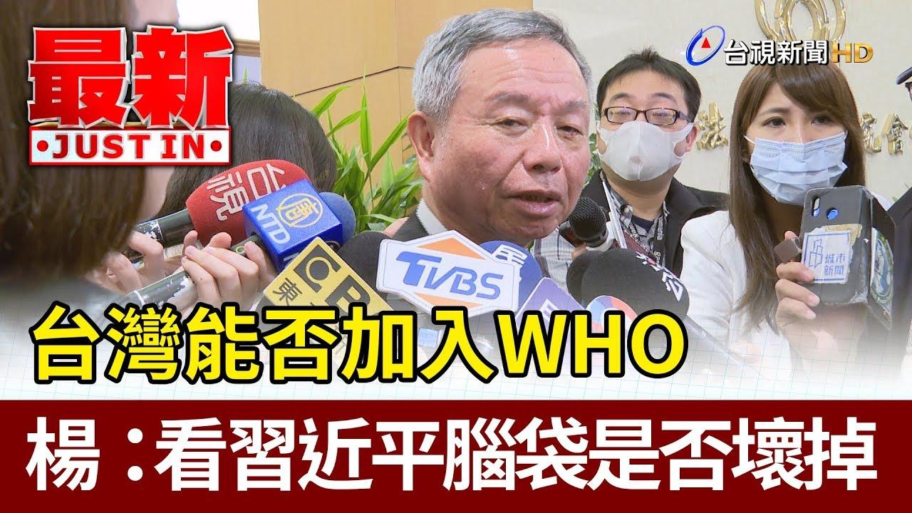 台灣能否加入WHO 楊志良:看習近平腦袋是否壞掉