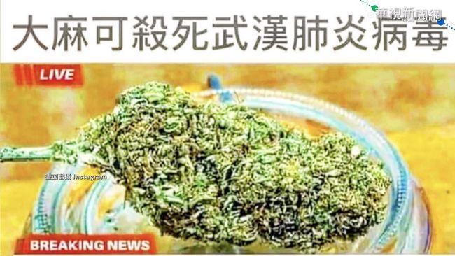 「大麻可殺死新冠病毒」謝和弦遭約談