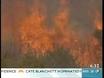 Kangaroos Island hell continues