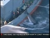 Plan to end Japan's whaling efforts