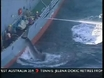 Efforts to confirm Japanese whaling pact