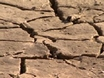 Worrisome Drought in the West
