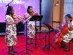 Triplets Trio: Violin, Viola and Cello