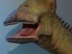 Nigersaurus Unveiled