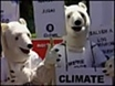 Climate talks stall amid rows