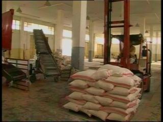 Flour crisis looms in Gaza